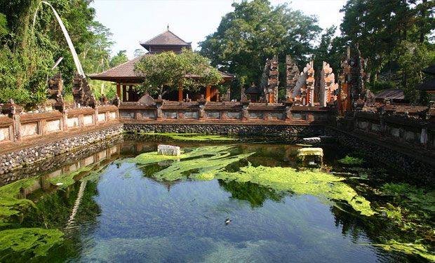 Bali Private Tours in Ubud